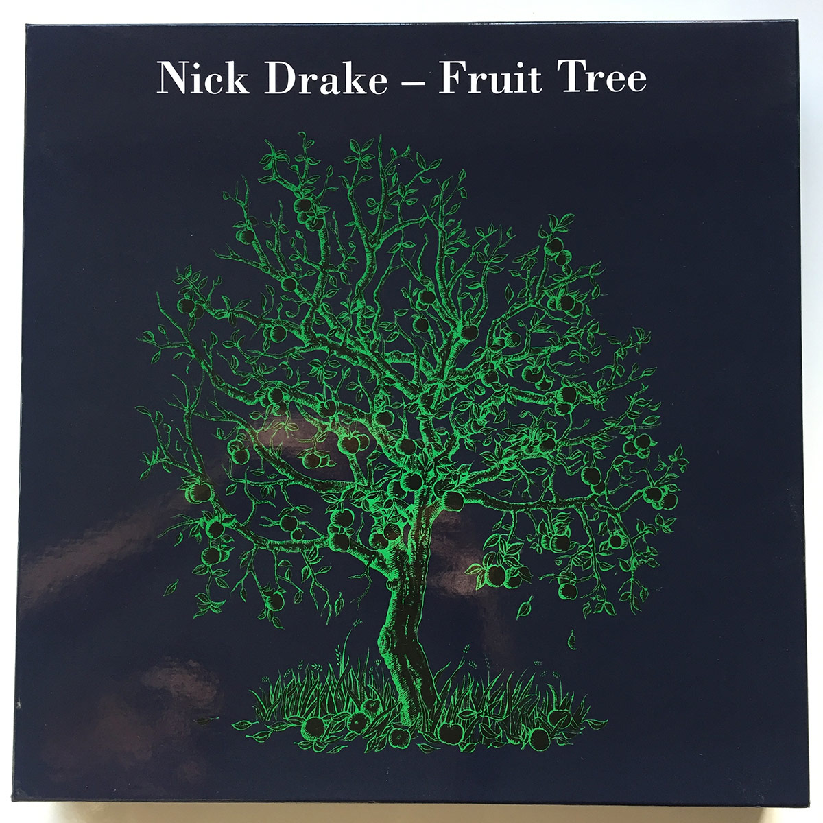 Nick Drake – Fruit Tree artwork